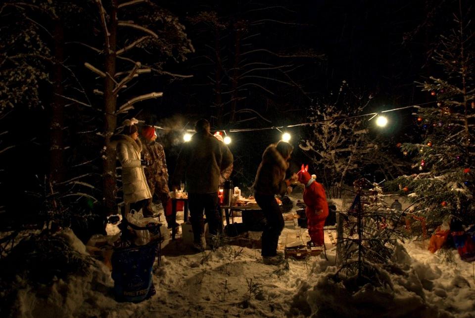 Встреча Нового года в лесу.