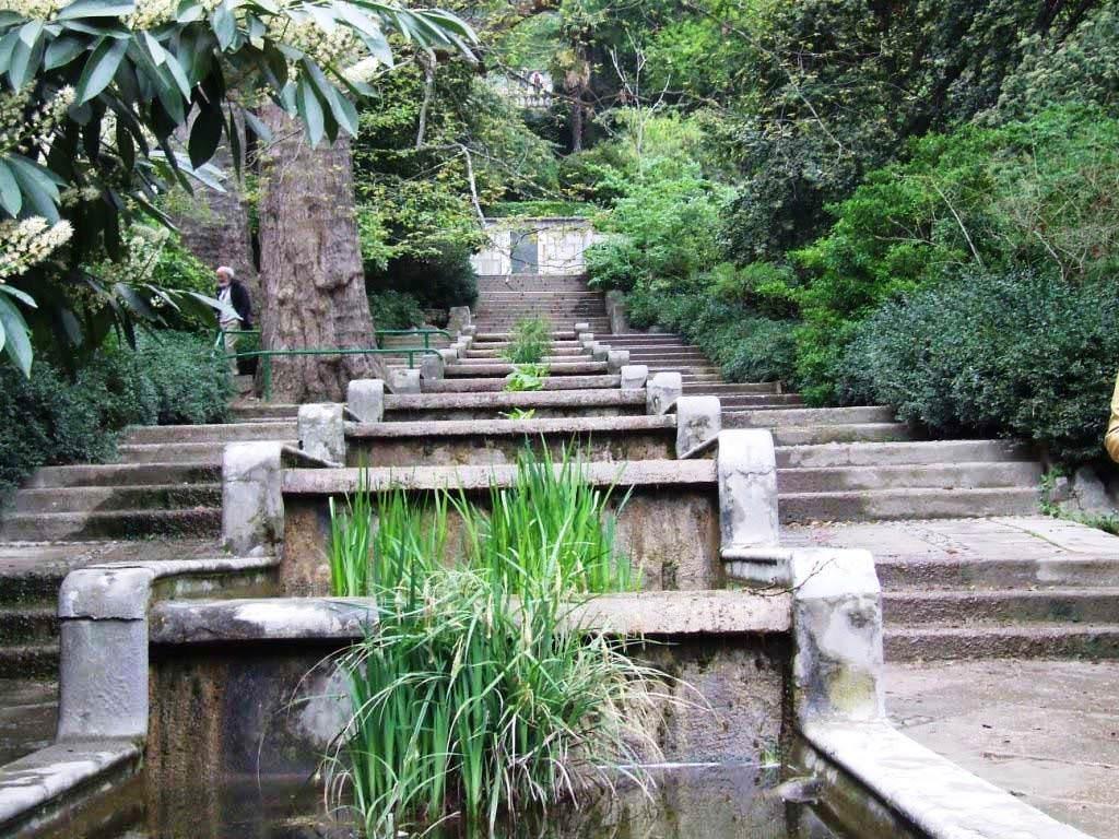 Фото Никитского ботанического сада