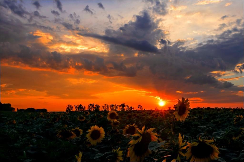 Фото города Астрахань