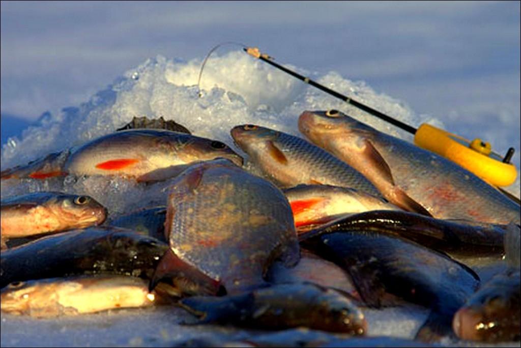 Гусиное озеро - уникальное место для любителей подводной охоты и зимнего лова