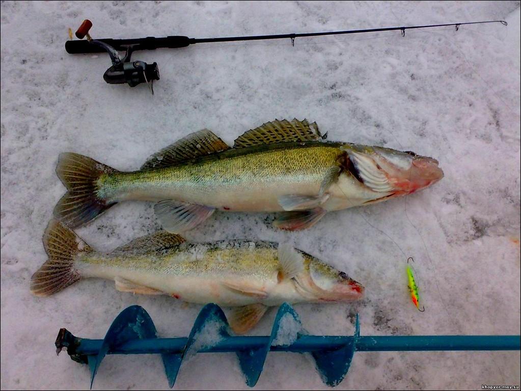 Рыбалка зимой, выбор оснастки и одежды