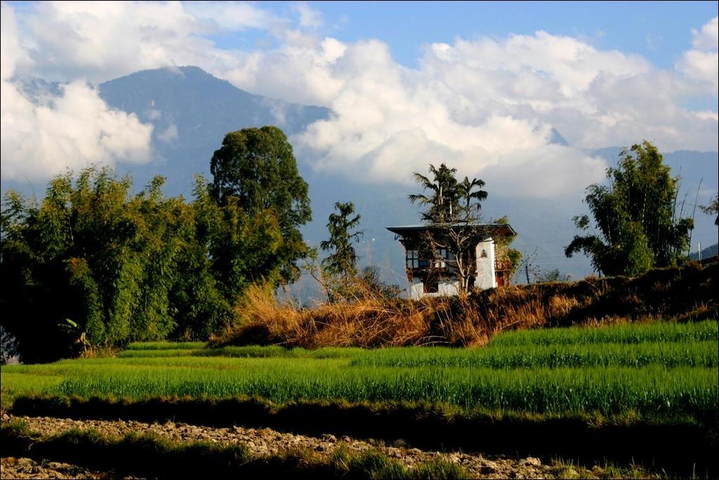 Поездка в Королевство Бутан.