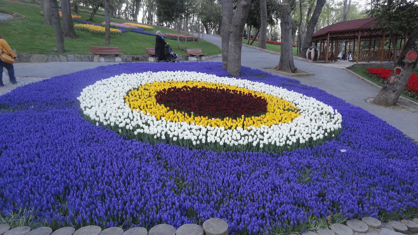 Весна в Стамбуле: фестиваль тюльпанов