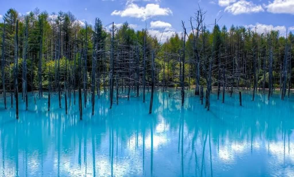 Бирюзовый пруд в Японии