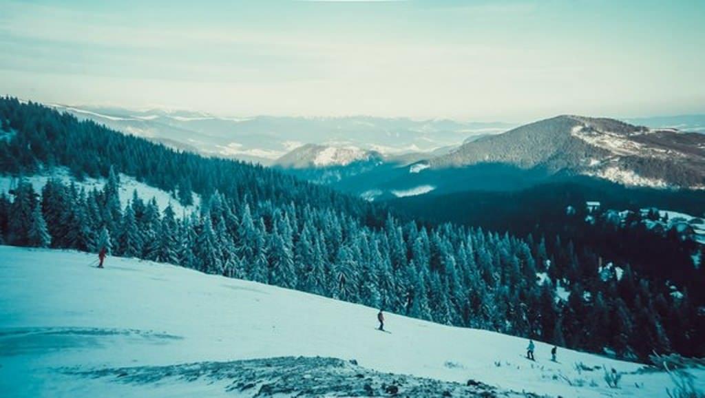 Катание на сноуборде в Карпатах