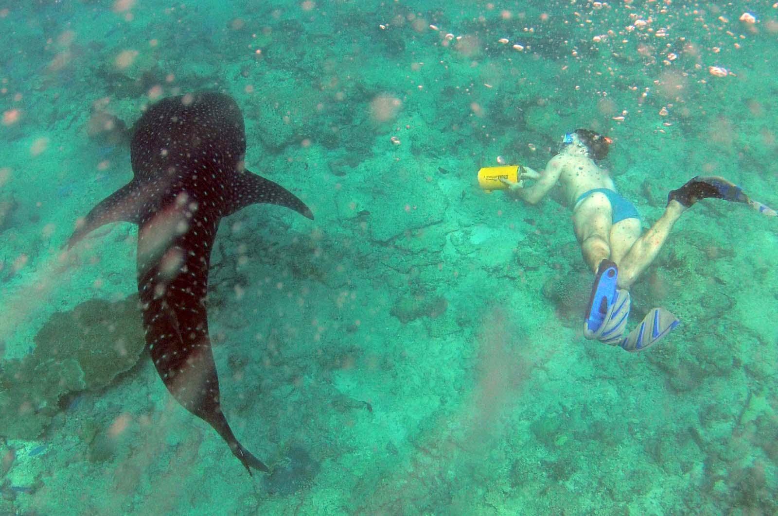 Рыбалка и погружение под воду