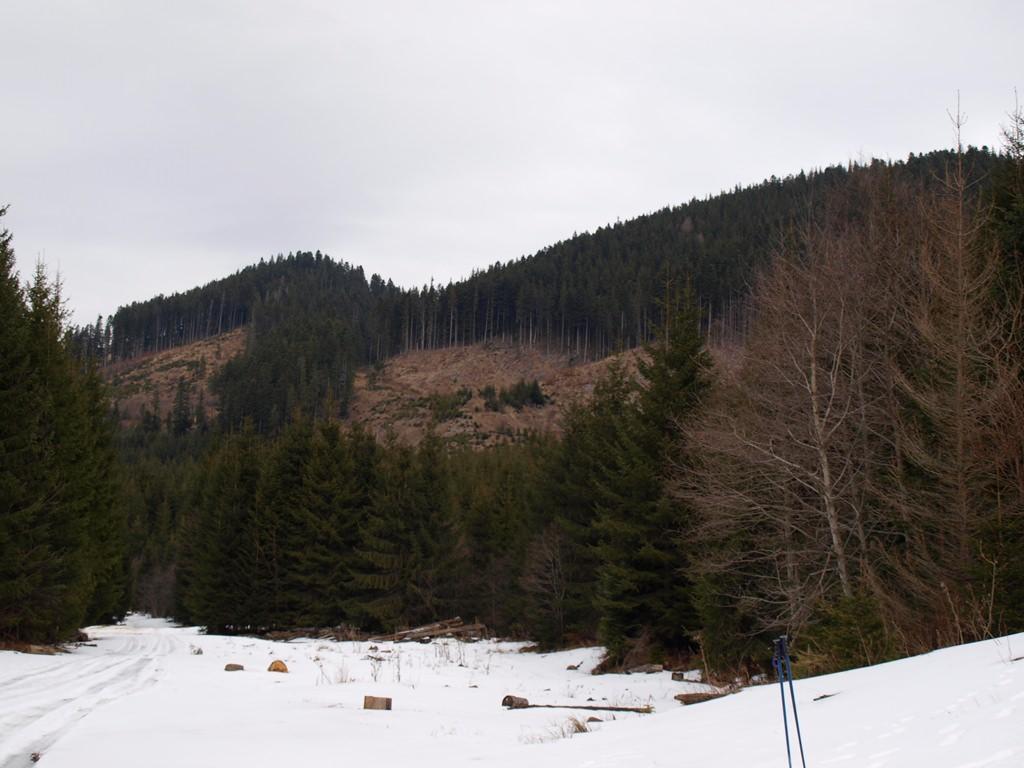 Альпинизм в зимних Карпатах